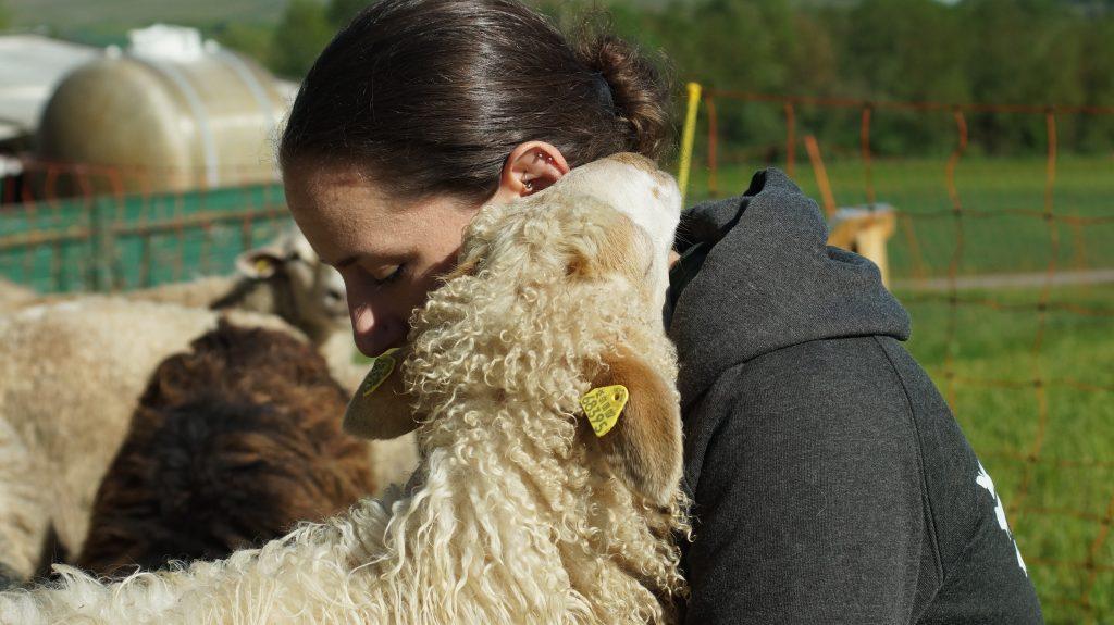 Caro und Angel - Jetzt eine Schafpatenschaft übernehmen