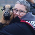 Begegnungen fürs Herz mit einer Schafpatenschaft beim Gnadenhof Live and let live.