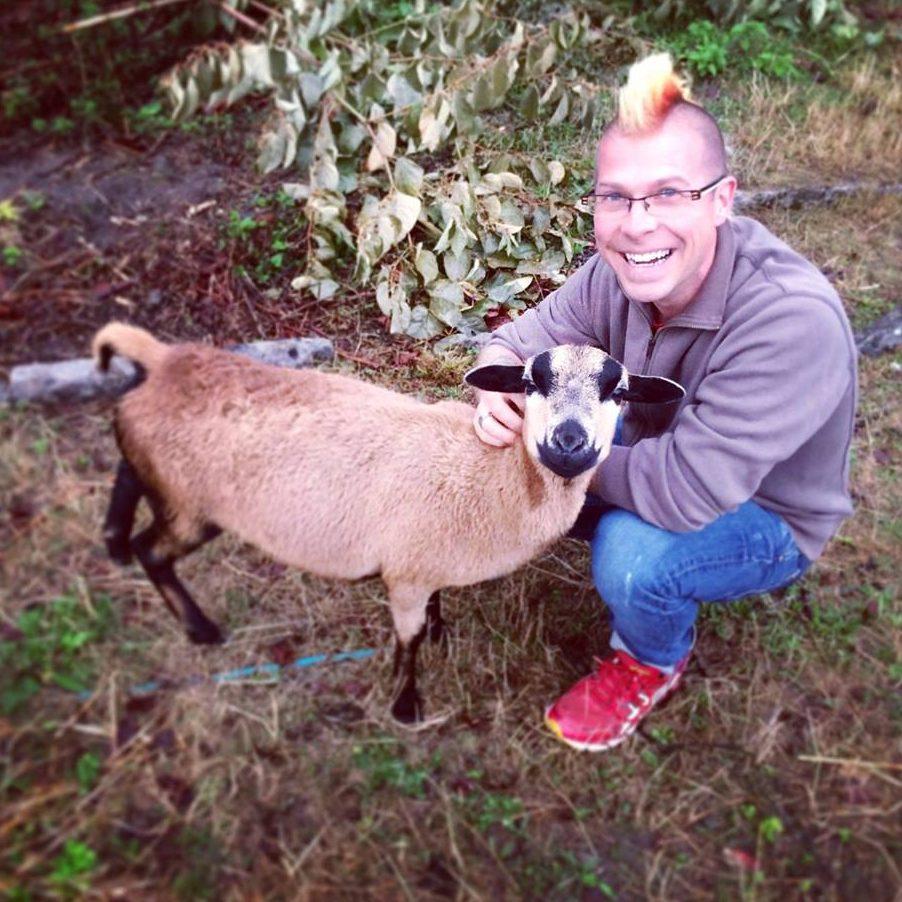 Schafpatenschaft übernehmen für Schaf Susi