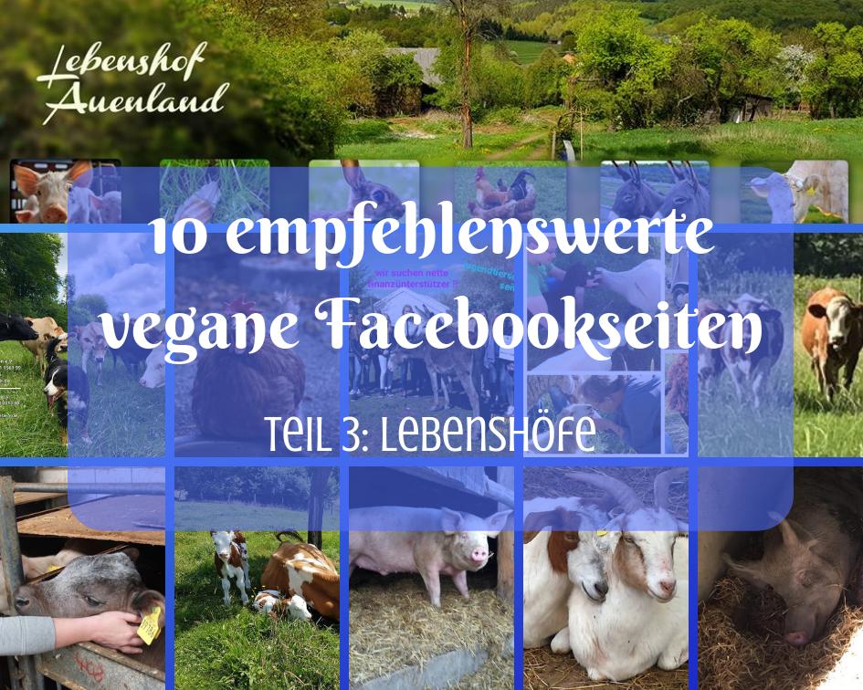Live and let live Lebenshof auf Facebook