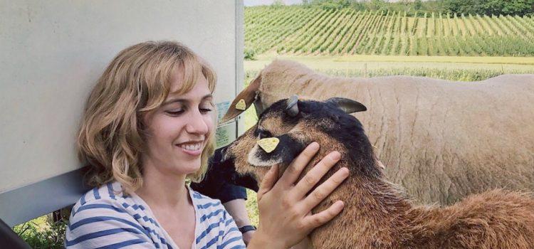 Zu Besuch: Annette for animals