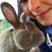 Kaninchen Jimmy vom Lebenshof Live and let live